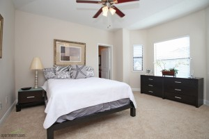 Apartment rentals in Houston